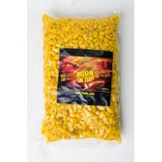 Corn in Dip 1,5 kg